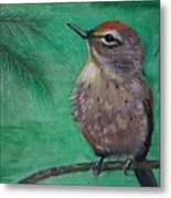 Little Warbler Metal Print