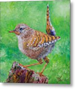 Little Wren Metal Print
