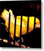 Little Yellow Bird Metal Print