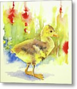Little Yellow Duck Metal Print