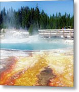 Live Dream Own Yellowstone Park Black Pool Text Metal Print