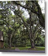 Live Oak And Spanis Moss Landscape Metal Print