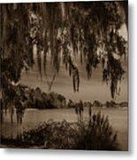 Live Oak Tree Spanigh Moss Sepia Silhouette Metal Print