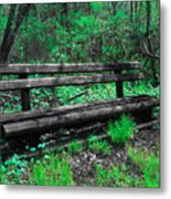 Lively Color Metal Print
