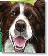 Liver And White Border Collie Metal Print by Dottie Dracos