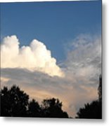Living Under Protection Metal Print