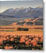 Livingston Montana Metal Print
