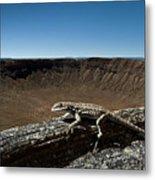 Lizard Crater Metal Print