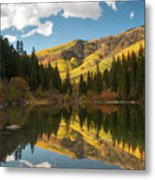 Lizard Lake Metal Print
