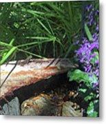 Lizards In The Garden Metal Print