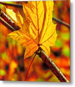 Leaving Autumn Metal Print