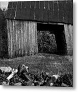 lloyd-shanks-barn-2BW Metal Print