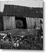 Lloyd-shanks-barn-4 Metal Print