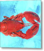 Lobster On Turquoise Metal Print