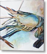 Lobster_001 Metal Print