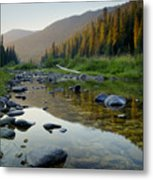 Lochsa Morning Metal Print
