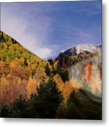 Lockett Meadow Looks Back Metal Print