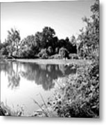 Lodi Pig Lake Reflections B And W Metal Print