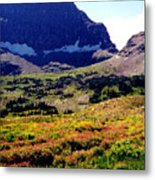 Logans Pass In Glacier National Park Metal Print