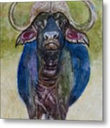 Lone Cape Buffalo Metal Print