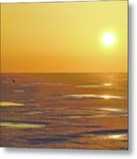 Lone Goose At Sunrise Metal Print