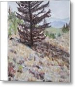 Lone Mountain Tree Metal Print