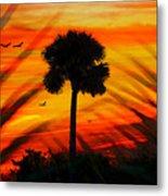 Lone Palm Florida Metal Print
