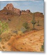 Lone Saguaro In Desert Metal Print