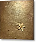 Lone Starfish On The Beach Metal Print