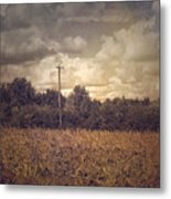 Lone Telephone Pole In Autumn Field Metal Print