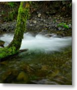 Lone Tree And Running Water Metal Print