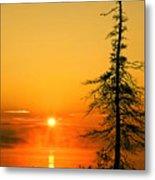 Lone Tree At Dawn Metal Print