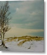 Lone Tree-horizontal Metal Print