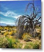 Lone Tree In Blooming Desert Metal Print