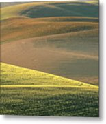 Lone Tree In The Palouse  Metal Print