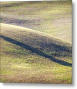 Lone Tree In Tuscany Metal Print