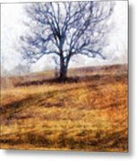 Lone Tree On Hill In Winter Metal Print