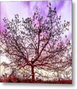 Lone Tree On The Hill Metal Print