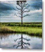 Lone Tree Reflected Metal Print