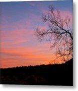 Lone Tree Sunset Metal Print