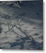 Loneliness In The Cold Metal Print