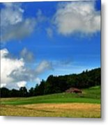 Lonely Meadow Metal Print