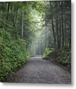 Lonely Road Metal Print