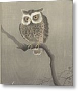Long-eared Owl On Bare Tree Branch, Ohara Koson, 1900 - 1930 Metal Print