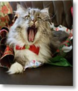 Long Haired Grey And White A Cat Yawns Amid Christmas Wrapping Paper Metal Print