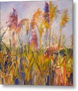 Long Island Marsh Metal Print