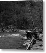 Long-pool-log-jam Metal Print