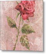 Long Stemmed Rose Metal Print