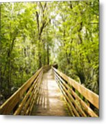 Long Walks Metal Print