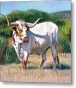Longhorn Bull Metal Print
